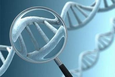 DNA甲基化检测8折优惠(BSP,MSP等)
