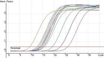 microRNA PCR芯片