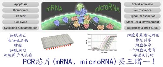 PCR基因芯片 PCR microRNA芯片促销(买三赠一