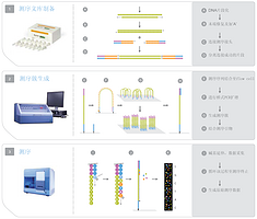 microRNA测序(piRNA、siRNA、miRNA)
