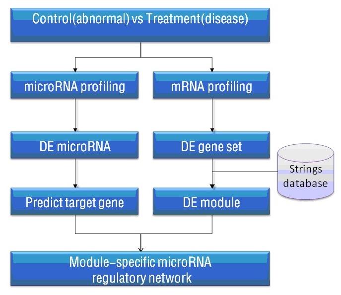 microRNA-mRNA芯片整合分析