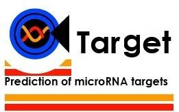 microRNA靶基因分析croRNA靶基因分析