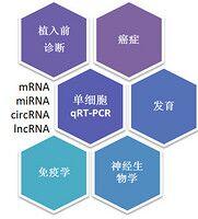 单细胞实时定量PCR技服务